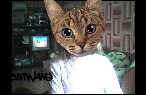 Catwang фото на загаз! | ВКонтакте