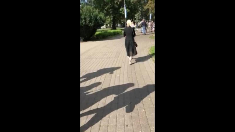 Video 76b6d04f87ee0182bffac58b72e4c655
