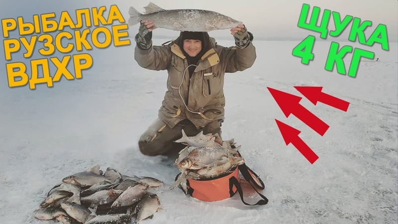 Косим ЛЕЩА и Поймали ЩУКУ на 4 КГ! Рыбалка на Рузском Водохранилище!