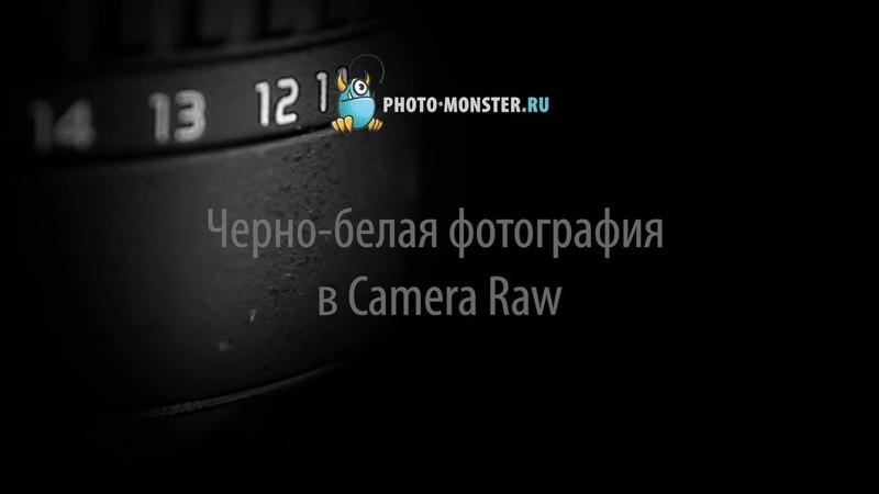 Черно белая фотография в Camera Raw