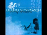 Dusko Goykovich - I Miss you so
