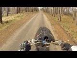Suzuki Let's 2 | Stunt