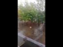 Бассейн возле дома - после дождика, в четверг 12 июля 2018 года