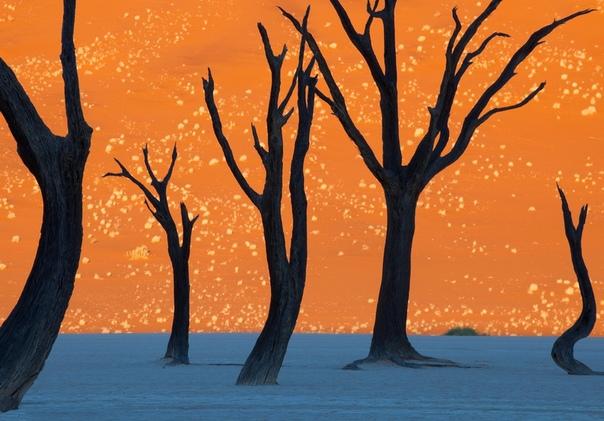 Самые потрясающие места нашей планеты В фантастических фильмах часто можно увидеть невероятные сцены, как например, острова, летающие в небе или дома эльфов, построенные на деревьях. Но мир, в