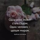 Виктория Королькова фото #21