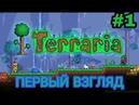 Terraria - Первый взгляд.