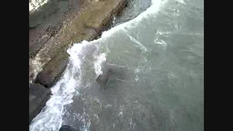 Видео292 сухум