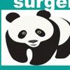 PANDA Surgery