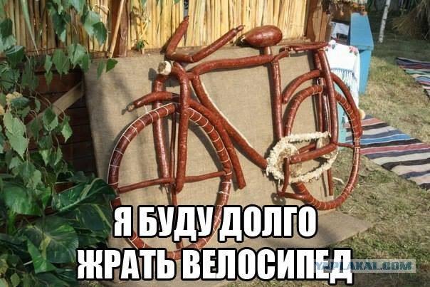 bikRyK_iaEo.jpg