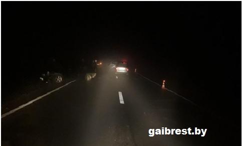 """В ДТП на М10 травмирована водитель и 4 пассажира """"Форд Гэлакси"""", из них 2 ребенка"""