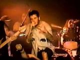 4.Down Rehab Live in Dallas 95'