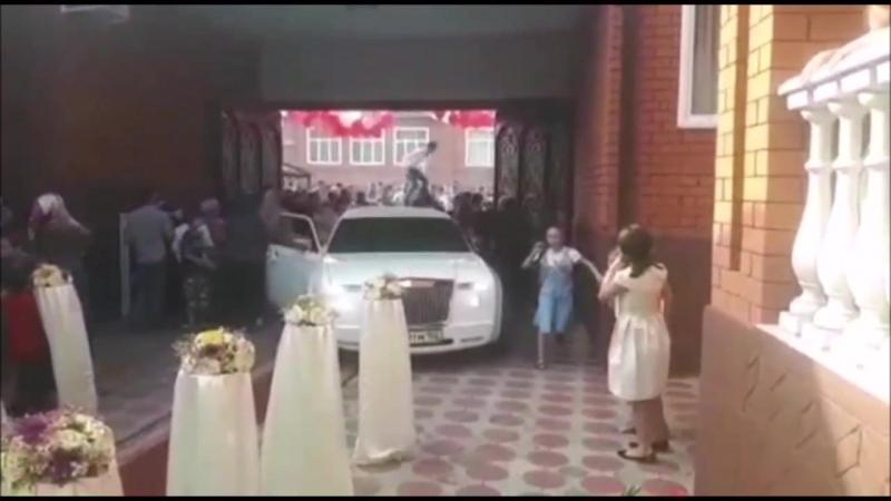 Зачинщики драки на чеченской свадьбе извинились