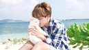 BTS Jimin With Cat MOMENTS