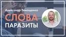 Тренинг «НЛП в продажах»: Слова-паразиты. Александр Тимощенко