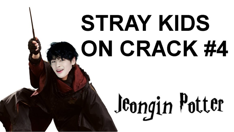 Stray kids on crack 4 - jeongin potter
