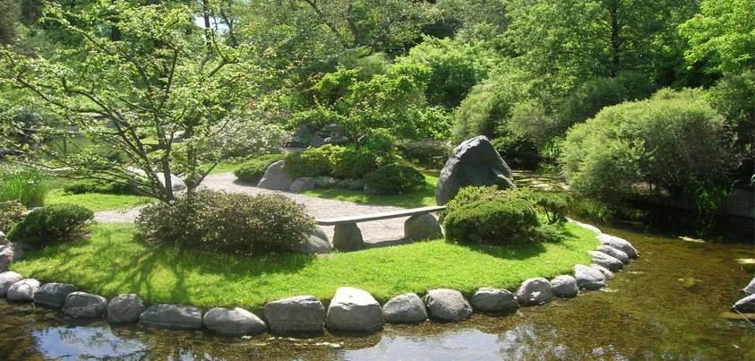 Бергианский ботанический сад. Стокгольм -8En1P4uxMg