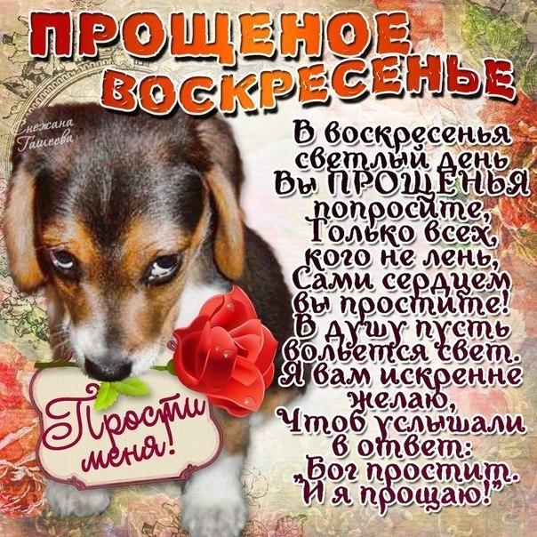Фото №322231647 со страницы Ивана Петрова