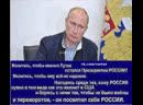 Не мешайте Путину работать