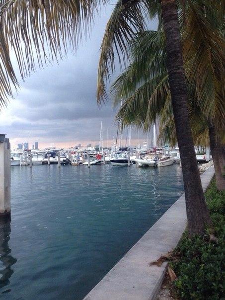 Юля Камаева | Miami Beach