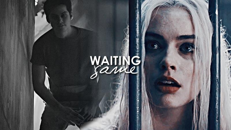 Harley Quinn Ꮥtiles Ꮥtilinski || Waiting Game