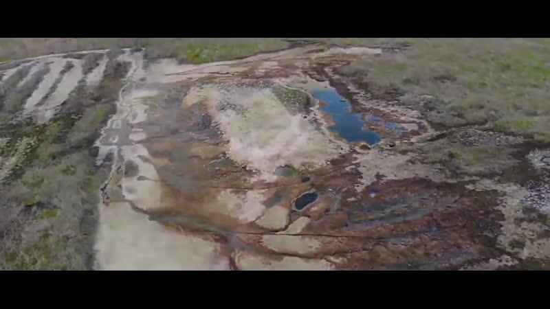 Волгоград По беспределу слив химических отходов на почву Более 5000 м2 убито химией