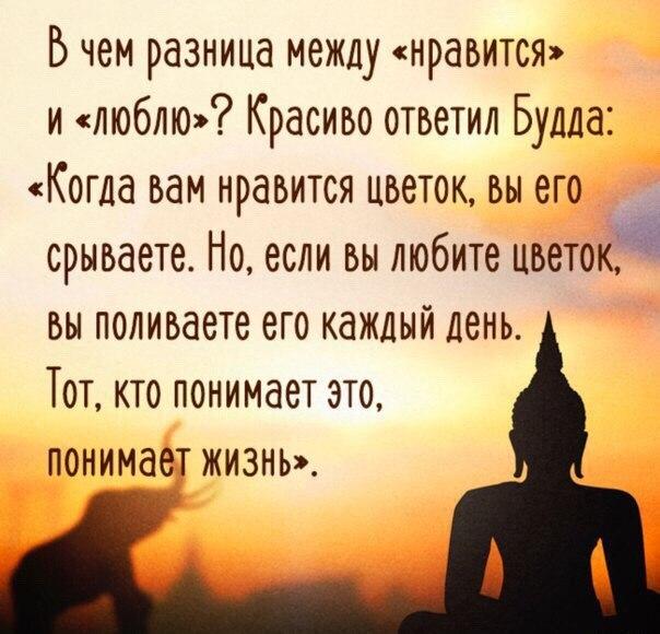 https://pp.vk.me/c7001/v7001807/212fc/31zNbf6Dpp0.jpg