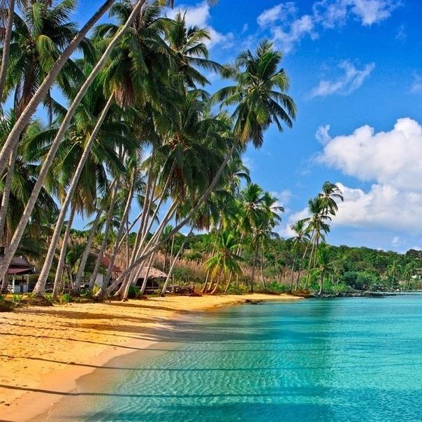 жизнь у моря. это самое лучшее – слышать его шум день и ночь, вдыхать его запах, гулять вдоль берега и смотреть за горизонт,где скругляется земля…джоджо мойес. вилла