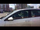 Собаку закрыли в салоне автомобиля г.Салават
