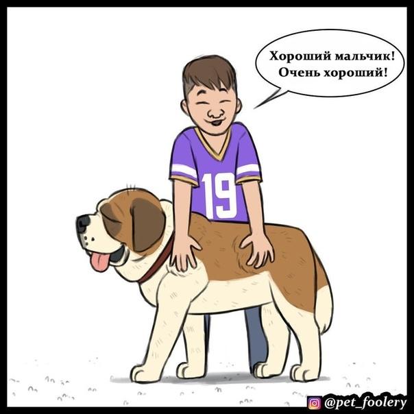 Хорошего мальчика должно быть много Иллюстратор: pet_foolery