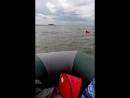 Заплыв на Тайвань День Моря
