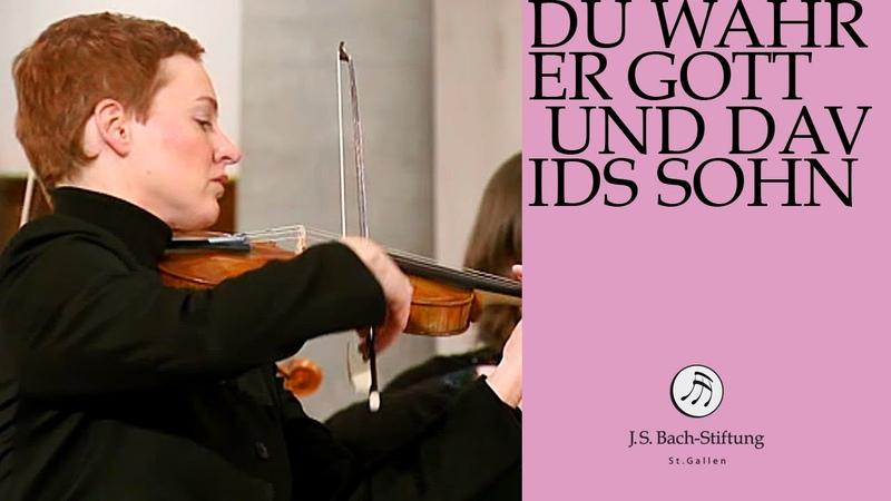 J.S. Bach - Cantata BWV 23 Du wahrer Gott und Davids Sohn | 3 Chorus (J. S. Bach Foundation)