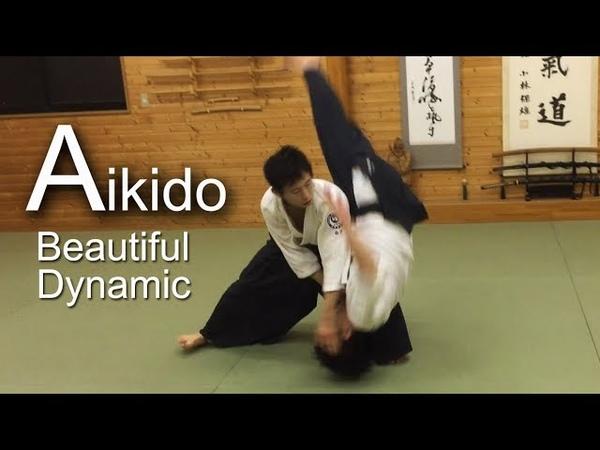 ダイナミック合気道 Aikido Dynamic and technical skills