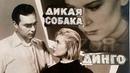 ДИКАЯ СОБАКА ДИНГО (киноповесть, экранизация) 1962 г