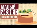 Малый бизнес до миллиона Как заработать свой первый миллион с нуля Евгений Гришечкин