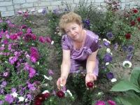 Светлана Коваленко, 20 августа 1967, Чигирин, id174722384