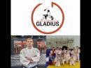 Гладиус самбо дзюдо