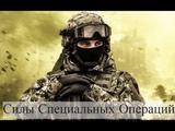 Современная армия РоссииСилы Специальных Операций РФССО России.
