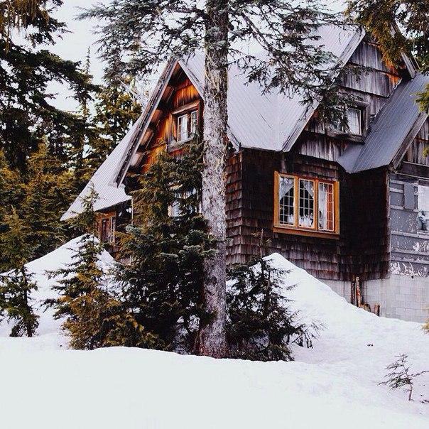 Зима дарит возможность мечтать о волшебстве и чуде. Главное - не упуст