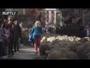 Фанаты Путина устроили шествие по всему миру