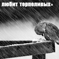 Michael Michael, 3 июня 1987, Москва, id150085522