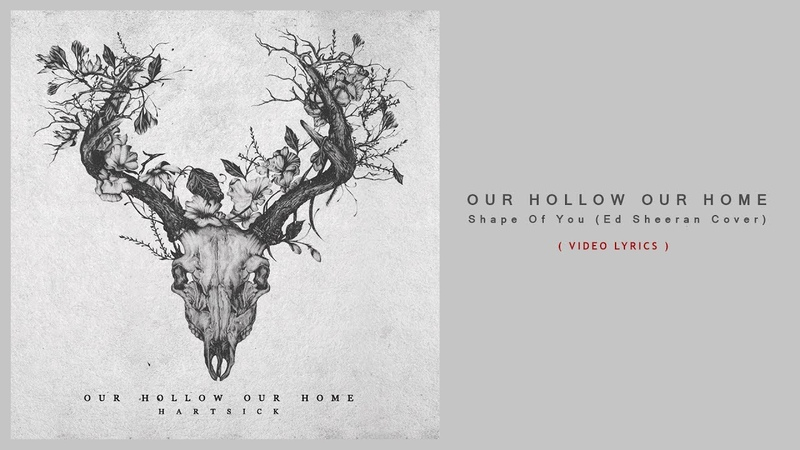 Our Hollow Our Home - Shape Of You ( Ed Sheeran Cover ) VIDEO LYRICS