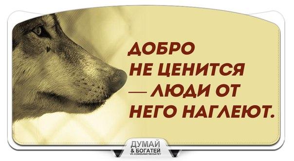 Фото №456244369 со страницы Дмитрия Скляра