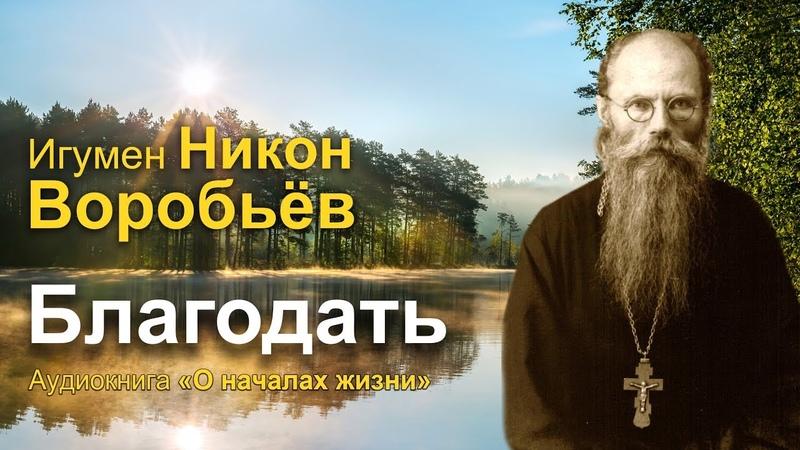 Благодать игумен Никон Воробьев