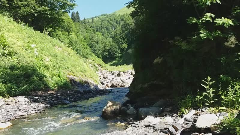 Купание в притоке Грибзы