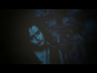 Bellatrix lestrange & lucius malfoy | harry potter vine