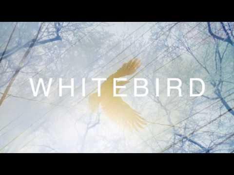 S10rw - ホワイトバード feat. Hatsune Miku 初音ミク