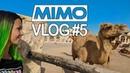 Miss Monique - MiMo Vlog #5 [Doha, Qatar]