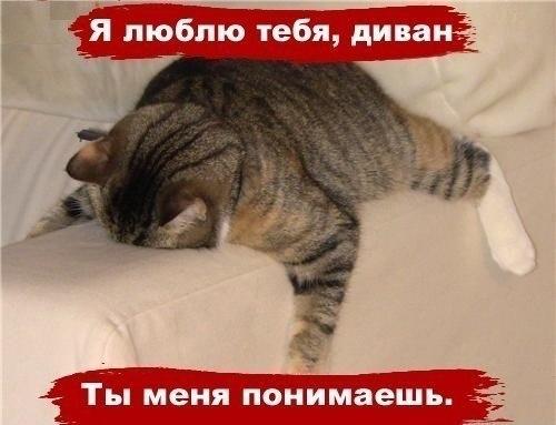 http://cs417526.vk.me/v417526402/8a34/fRwUYjDUd-M.jpg