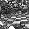 Шахматы в Оренбуржье