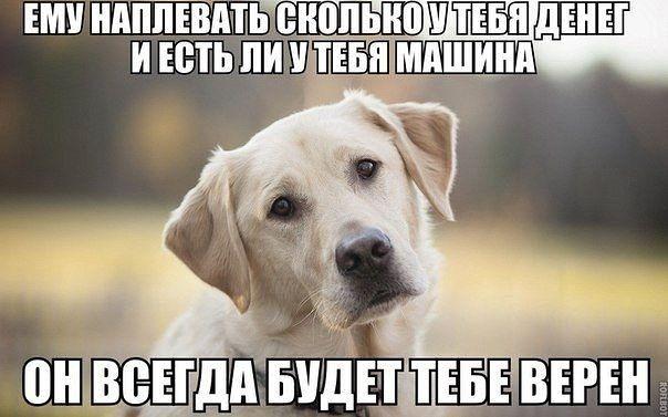 Фото №456243083 со страницы Сони Зборовской